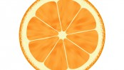 orange-slice-illustration